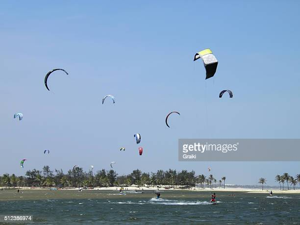 A group of people practicing kite surfing.