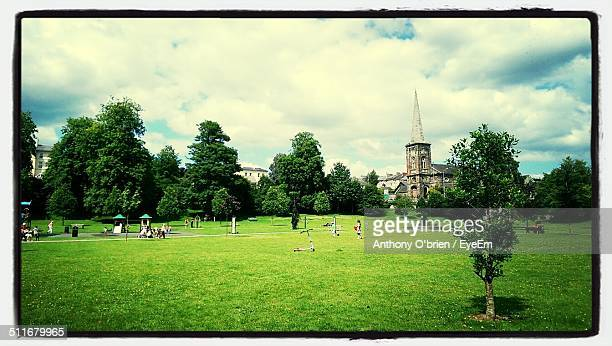 group of people relaxing on grassland against trees - fermoy stock photos and pictures