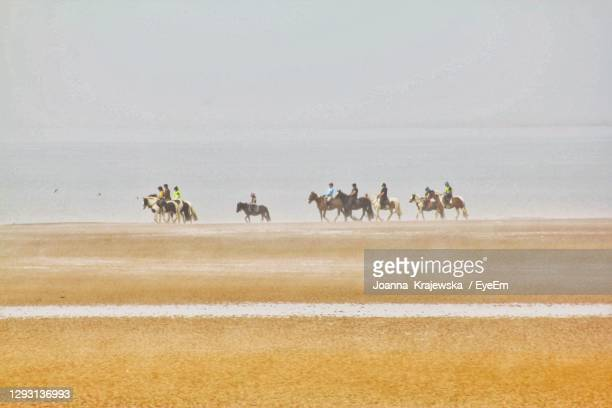 group of people riding horses - sports league stock pictures, royalty-free photos & images
