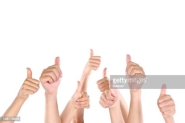 白い背景の上に親指を立てる