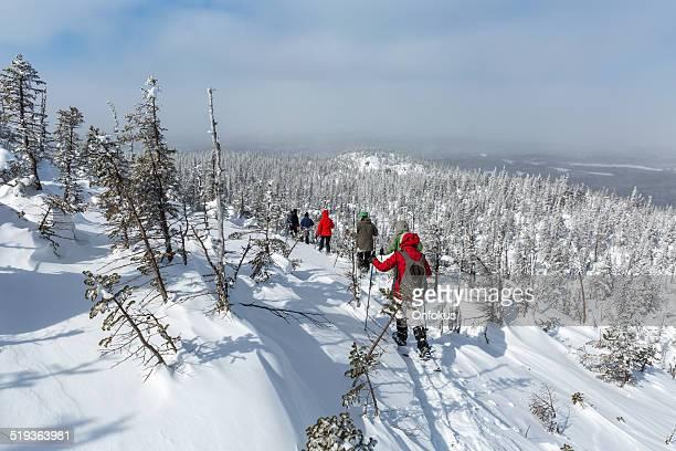 groupe de personnes de la marche en raquettes dans la forêt d'hiver - province du québec photos et images de collection