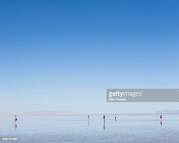 group of people standing on flooded bonneville salt flats, utah - salt flat stock pictures, royalty-free photos & images