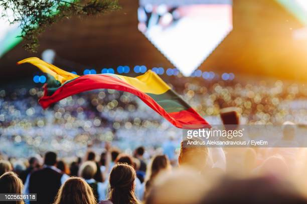 group of people with flag at music concert - lithuania stock pictures, royalty-free photos & images