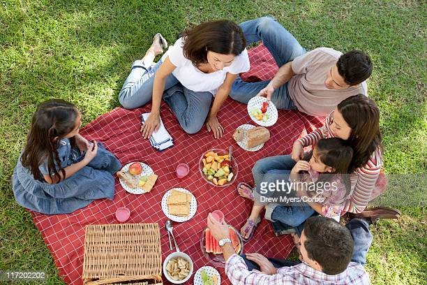 Group of people with kids (5-6,10-12,16-17) having picnic