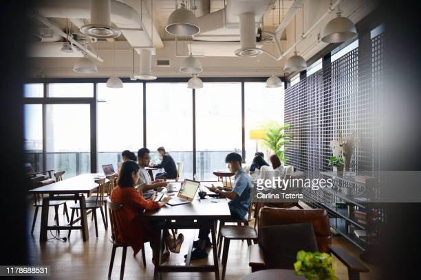 group of people working in a modern co-working office - trabalhadora de colarinho branco imagens e fotografias de stock