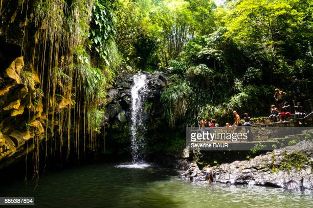 A group of persons in front of the Annandale Falls, Grenada, West Indies