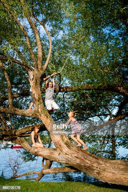 Group of preteen children climbing big tree in summer.