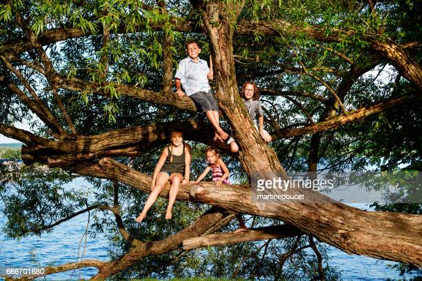 Group of preteen children playing on big tree in summer.