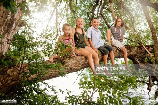 Group of preteen children sitting on a tree branch in summer.