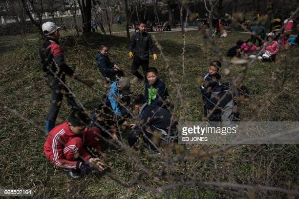 A group of primary school children collect leaves sticks and grasscuttings in a park in Pyongyang on April 7 2017 During springtime in Pyongyang...