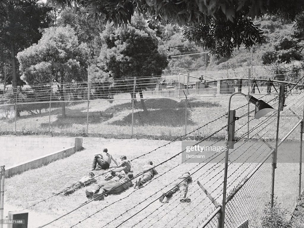 Pro-Nazi Prisoners Lie in the Sun in an Internment Camp : News Photo