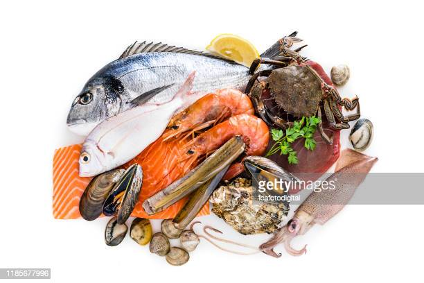 group of raw seafood isolated on white background - seafood stock pictures, royalty-free photos & images