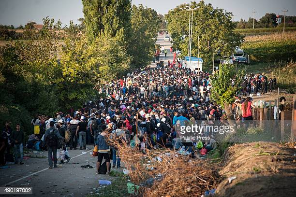 BORDER BAPSKA SYRMIA CROATIA A group of refugees waiting for a chance to cross the border Migrants come to Europe for asylum and hope for better and...