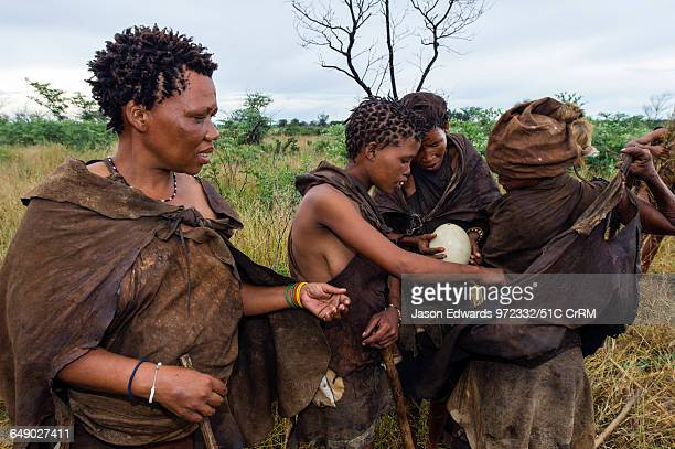 A group of San Bushmen women removing an ostrich egg from a animal skin sling