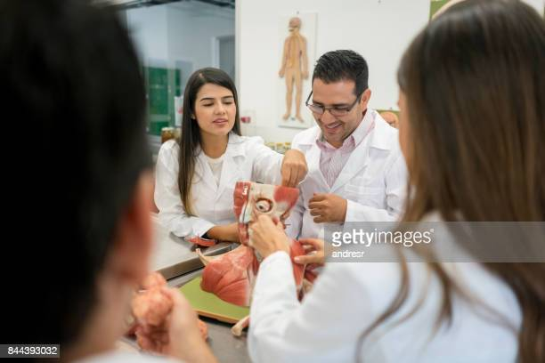 Group of science students in an anatomy class
