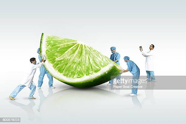 group of scientists looking at a giant lime slice
