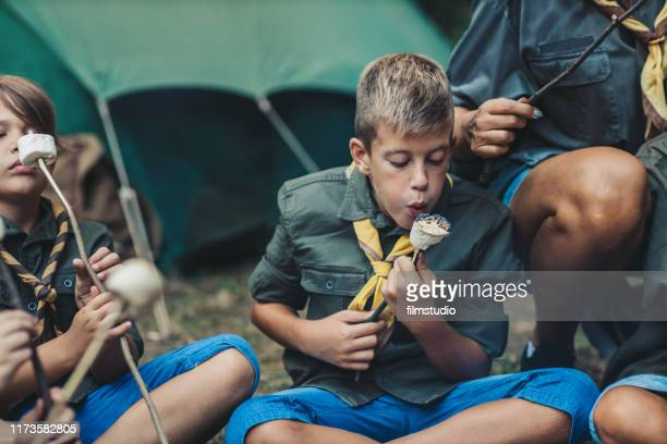 group of scouts roast marshmallow candies on campfire in forest - cochlear implant stock pictures, royalty-free photos & images