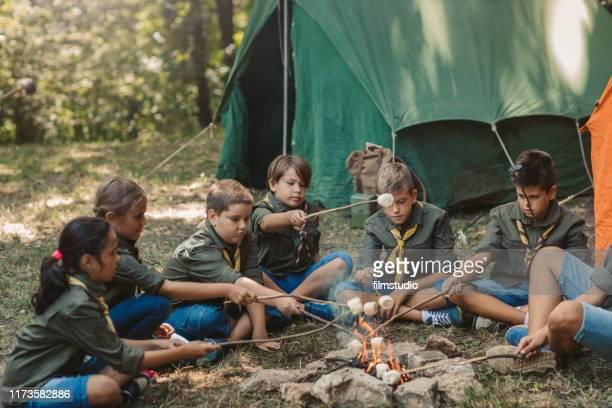 gruppe von pfadfindern roast marshmallow bonbons on campfire in forest - pfadfinder stock-fotos und bilder