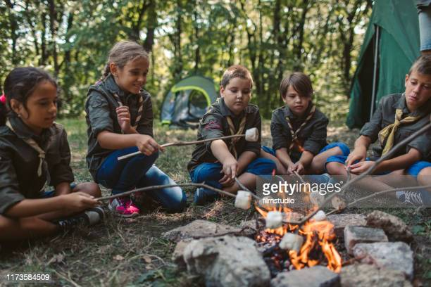 group of scouts roast marshmallow candies on campfire in forest - girl scout stock pictures, royalty-free photos & images
