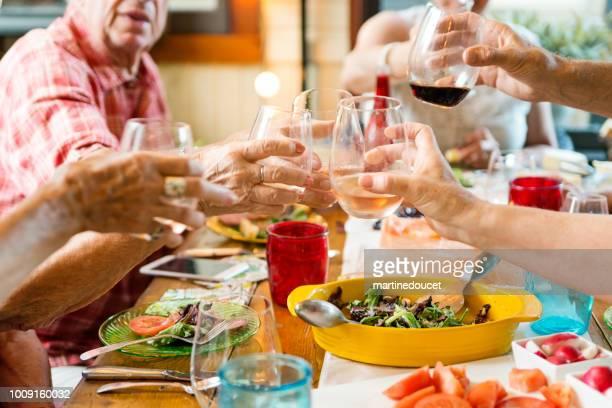 Grupo de adultos mayores brindando en la cena en casa de verano.