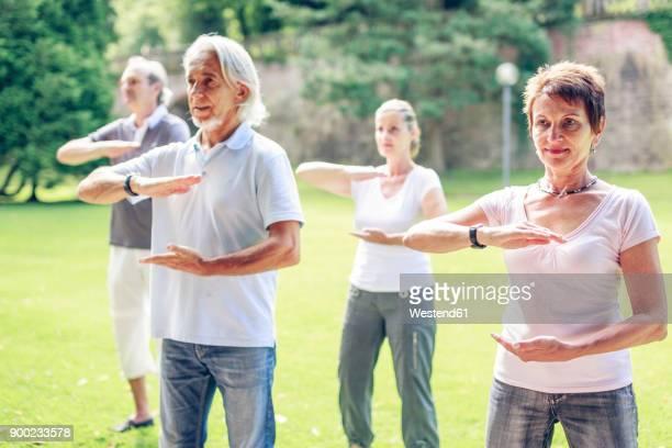 group of seniors doing tai chi in a park - 65 69 jaar stockfoto's en -beelden