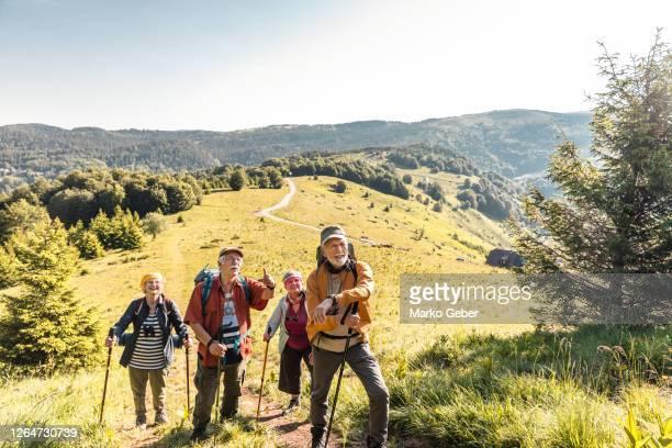group of seniors hiking - aktiver lebensstil stock-fotos und bilder