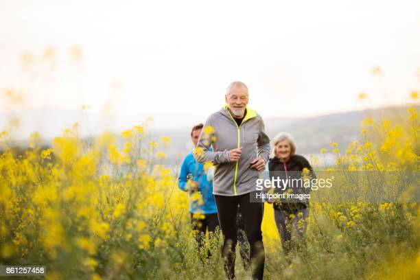 group of seniors running outside on the meadow. - alter erwachsener stock-fotos und bilder
