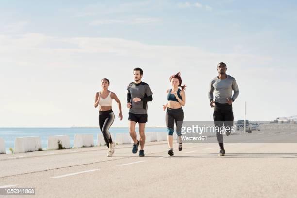 group of sportspeople jogging at harbour - correr imagens e fotografias de stock