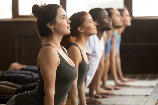 Group of sporty people in upward facing dog exercise 922345020