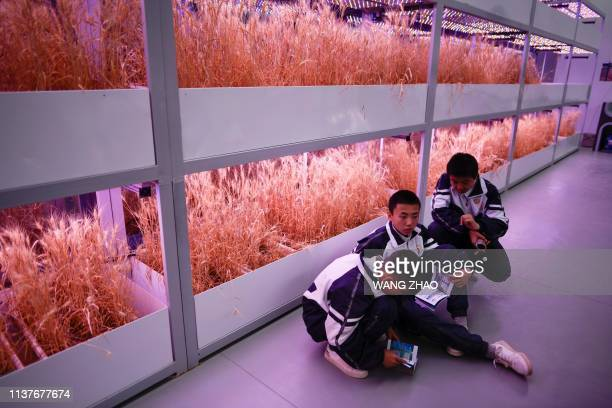 A group of students visit Mars Base 1 a CSpace Project in the Gobi desert some 40 kilometres from Jinchang in China's northwest Gansu province on...