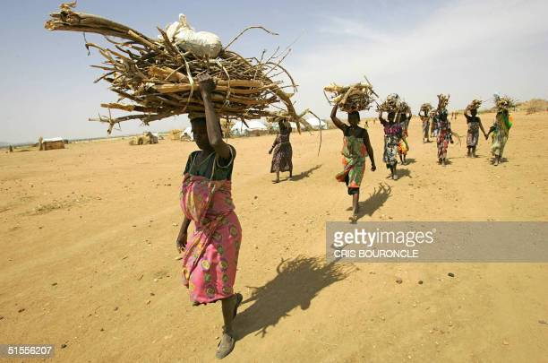 A group of Sudanese women walk into the Internally Displaced Camp of Mourni carrying loads of firewood 24 October 2004 Mourni the largest camp in...
