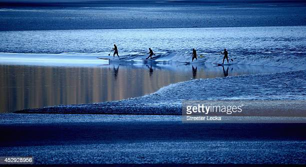 A group of surfers ride the Bore Tide at Turnagain Arm on July 14 2014 in Anchorage Alaska Alaska's most famous Bore Tide occurs in a spot on the...