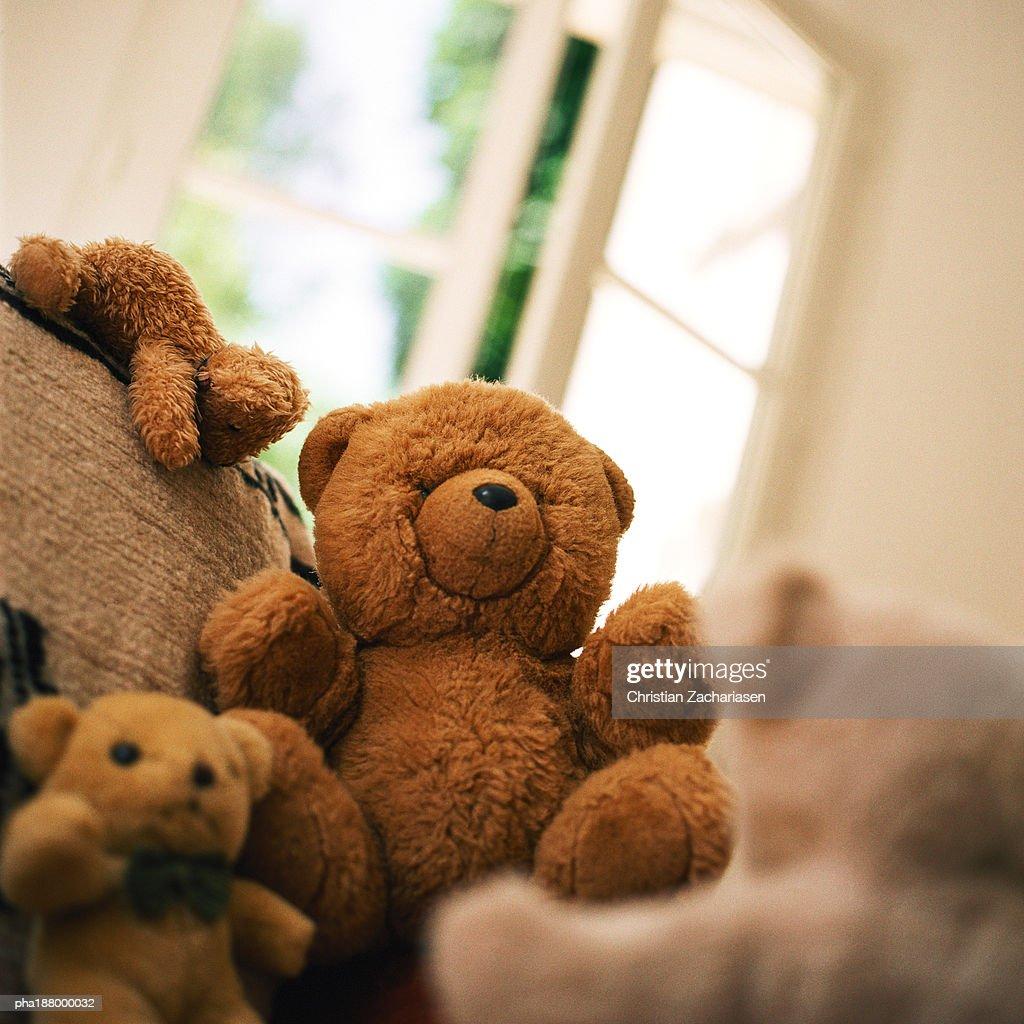 Group of teddy bears sitting near window. : Stockfoto