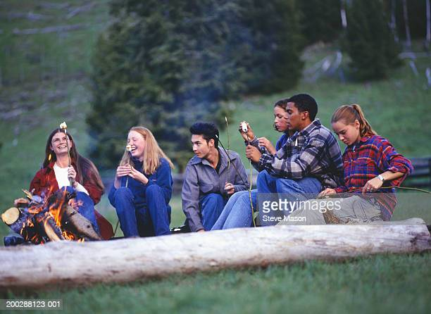 Group of teenagers (14-15) (16-17) in country field eating marshmallows by campfire
