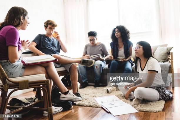 gruppo di adolescenti che studiano a casa - piccolo gruppo di persone foto e immagini stock
