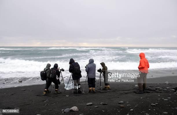 group of tourist making photo at beach at jökulsarlon, east iceland - austurland stock-fotos und bilder