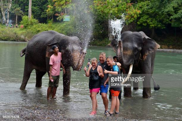 A group of tourist seen having fun with elephants At Elephant and Ecotourism Gunung Leuser National Park tourists can help bathing elephants on the...