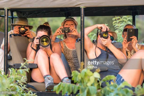 A group of tourists in a safari caravan all hold up their cameras to snap photos of the wildlife Chobe National Park Botswana