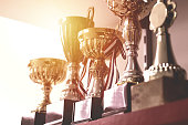 Group of Trophies on Shelf