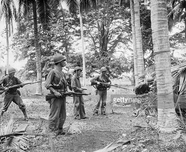 Group of US Marines stand at the ready and peer through undergrowth beneath palm trees as they seek out enemy stragglers during an early phase of...