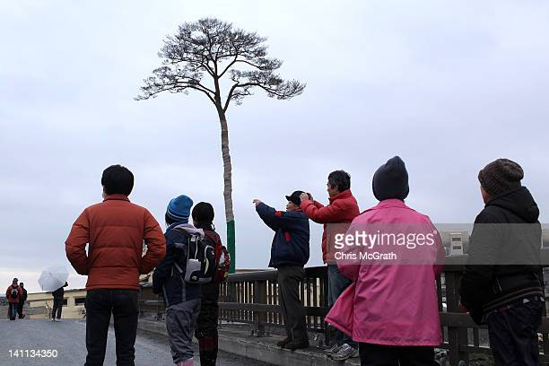 A group of volunteers from Tokyo take photographs of the single pine tree left standing after the March 11th tsunami which swept away an entire...