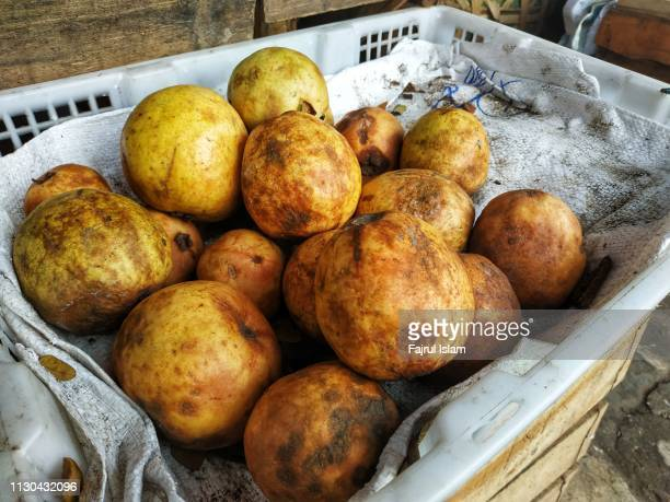 Group of Withered Guava at Fruit Market