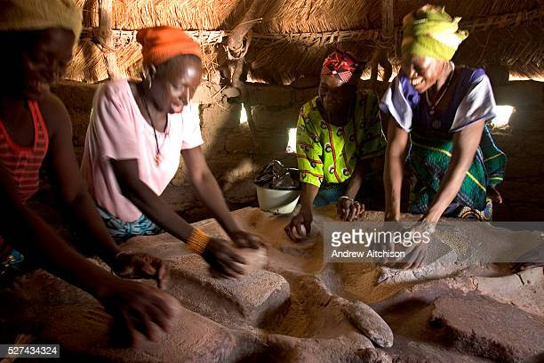 A group of women in Fada N��Gourma Burkina Faso grind organic millet on a traditional table carved from stone to make flour The table has been in the...