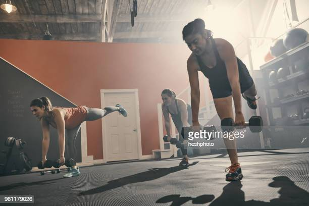 group of women in gym exercising using dumbbells - heshphoto stock pictures, royalty-free photos & images