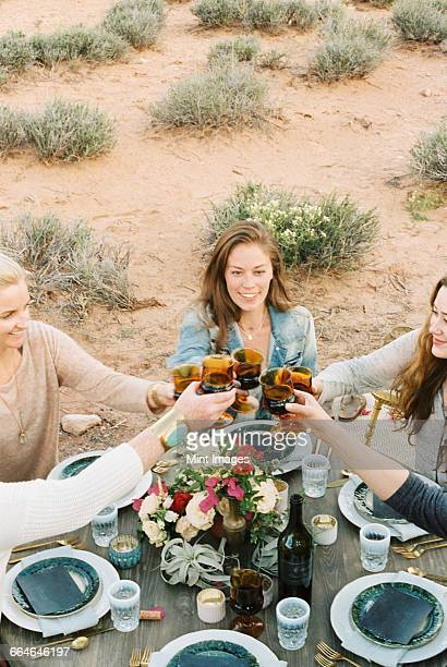 A group of women raising their glasses to toast each other at an outdoor meal.