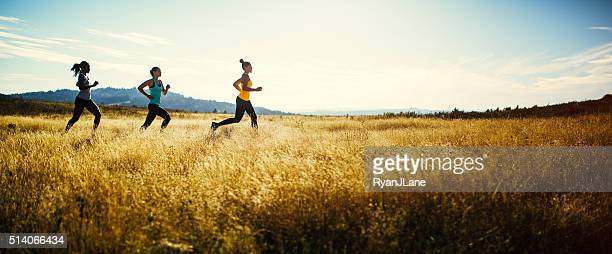 group of women running in nature area - cross country running stock pictures, royalty-free photos & images