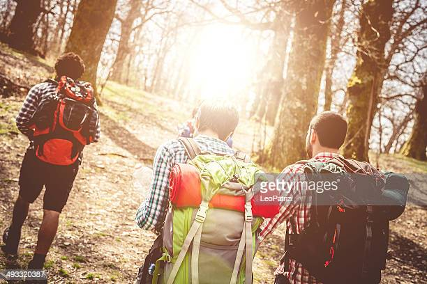 Group of  young friend walking through the forest
