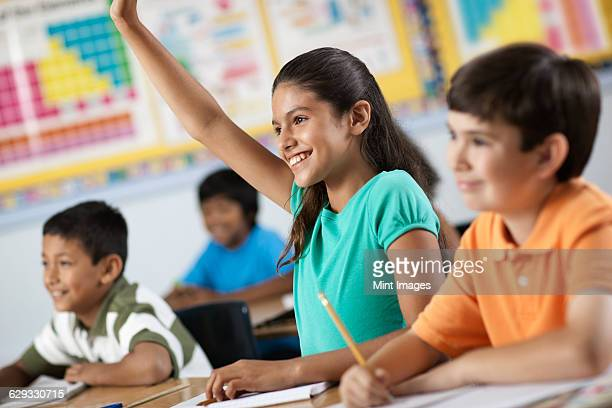 A group of young girls and boys in a classroom, classmates. A girl raising her hand.