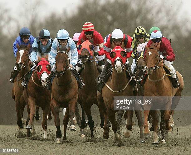 A group shot of the pack during the Bet Direct Handicap Stakes held at Lingfield Racecourse on December 22 2004 in Lingfield England