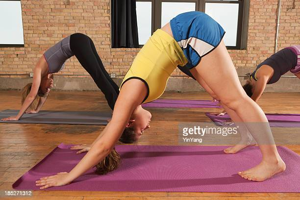 Group Yoga Down Dog Pose in Health Club Vt